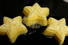 Holiday Wax Melts - White Chocolate Zucchini Bread Stars (RTS)