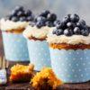 blueberry pumpkin patch fragrance
