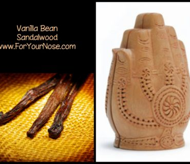 vanilla bean sandalwood fragrance