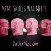 mini skull wax melts