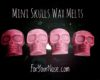 mini skull wax melts
