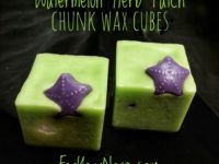 watermelon herb patch chunk wax cubes